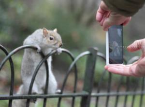 CEWE TIPPS Smartphone-Fotografie